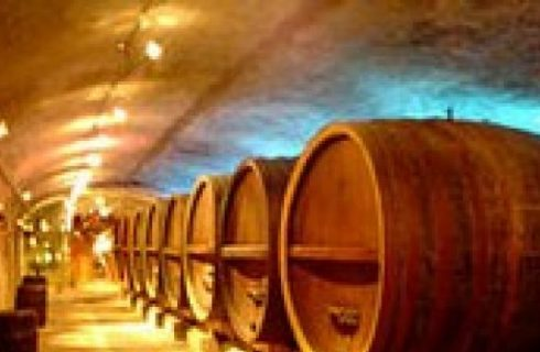 2005: annata buona per il vino?
