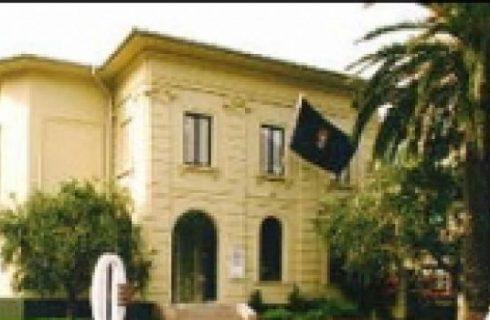 Il museo dell'olivo