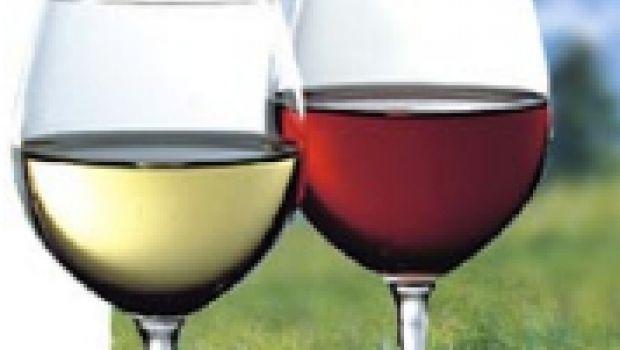 Igt e Doc: attenzione ai vini sudamericani