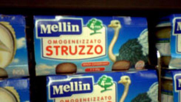 Lo struzzo: è buono anche frullato