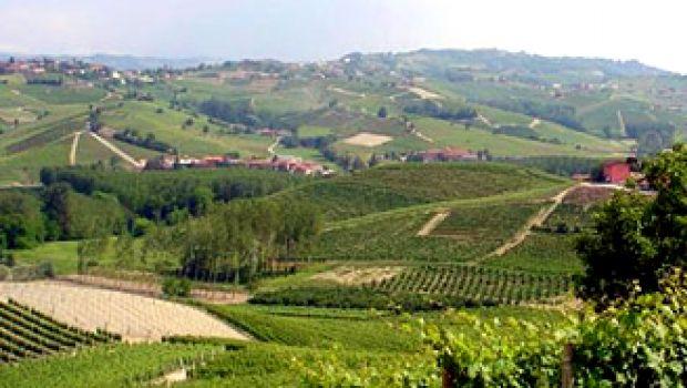 Notti Rosse Wine & Music Festival
