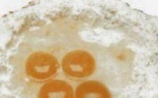 Antica pasticceria romana: i turchetti