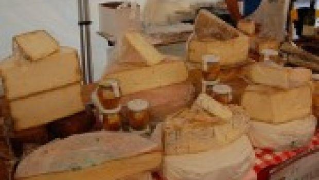 La guida 'Caseus, alla ricerca dei formaggi nel Lazio'