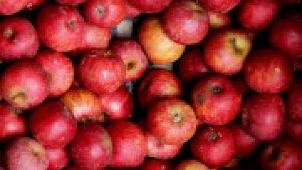 Mangiare sano: singolare esperimento in classe