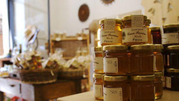 Mielinumbria, decima edizione per conoscere il miele