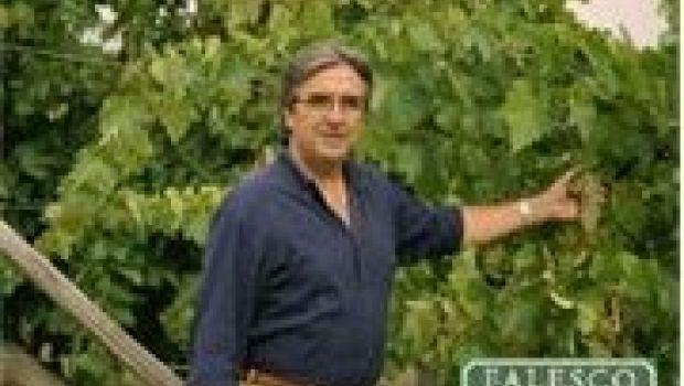 I grandi vini di Riccardo Cotarella