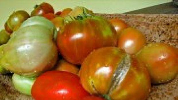 Nel 2008 'guerra' ai pomodori cinesi