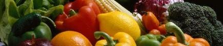 Capodanno biovegetariano a Bologna