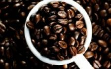 All'aeroporto di Fiumicino nasce 'Punto Caffè', vero Maya