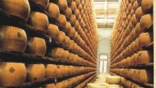 Per conservare al meglio i formaggi…