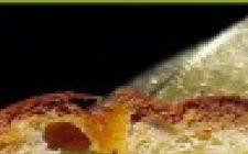 Allarme panettone: 'tarocchi' in agguato