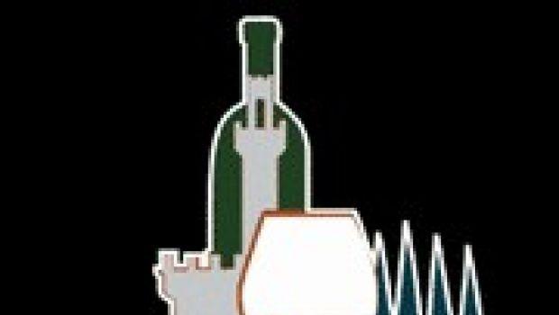 Su due ruote attraverso le strade del vino