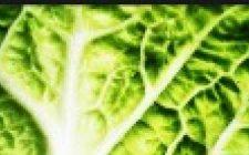 Mangia verdura e ti salvi dalla cataratta