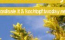 Un menù in giallo per l'International Women's day