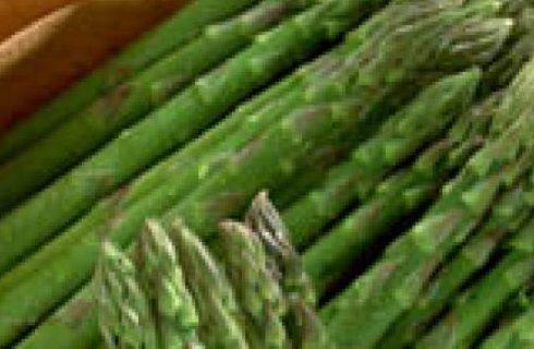 Sagra dell'Asparago a maggio 2008