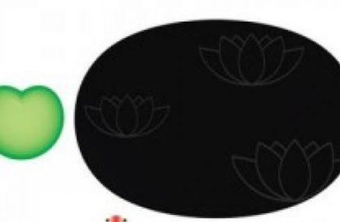 Lily Pond, il set per sushi di Alessi