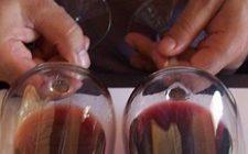 Degustazione di dieci grandi vini a dieci anni di distanza