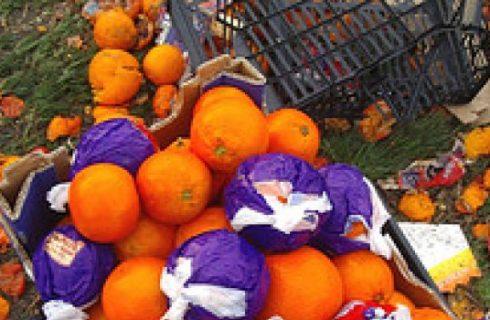 Ricetta veloce degli spiedini all'arancia