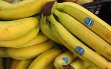 Ricetta gustosa delle banane fondenti