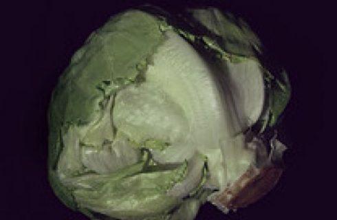La ricetta delle lattughe ripiene