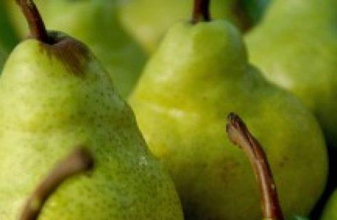 Ricetta dolce: Bavarese alle pere