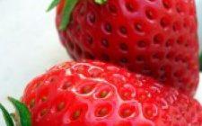 Ricetta dolce: Torta light alle fragole e yogurt