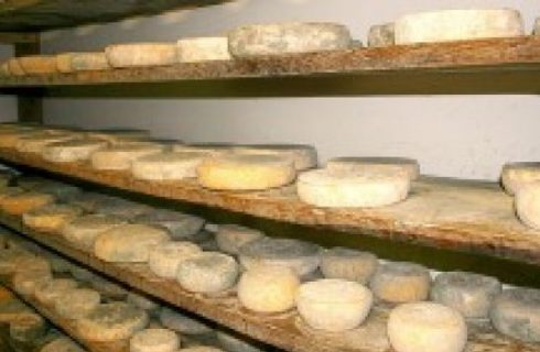Ricetta insalata: Insalata di formaggi