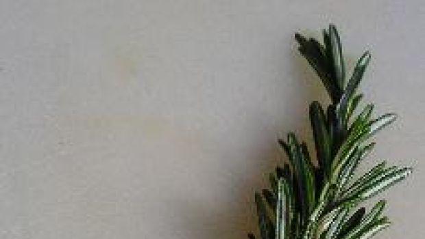 Stuzzichini: ricetta delle frittelle al rosmarino