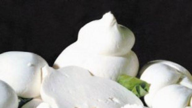 Ricetta facile per un antipasto: fior di latte fritto