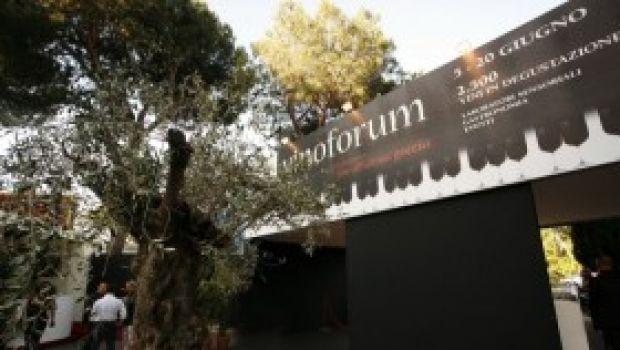 Considerazioni circa la VI edizione del Vinòforum