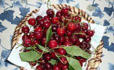 Cestini ripieni di ciliegie