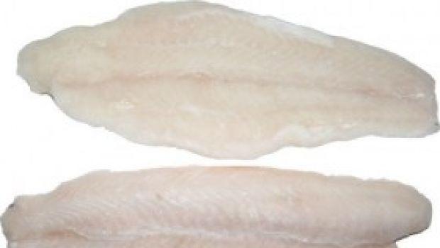 Ricette di pesce: filetti di sogliola al profumo di sedano