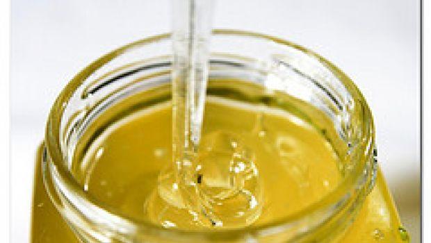Il miele come giocattolo nelle scuole