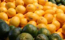 Ricette dolci di Natale: Aranzata ovvero bastoncelli all'arancia.
