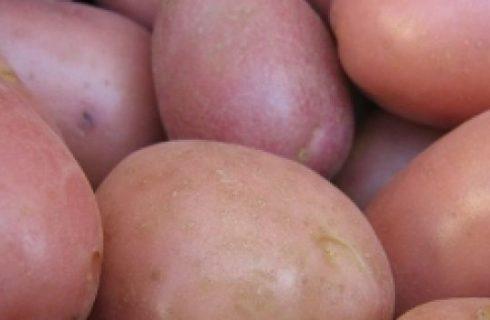 Ricette facili: insalata di patate e mandorle