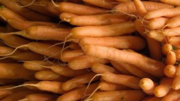 Ricette dolci: budino di carote