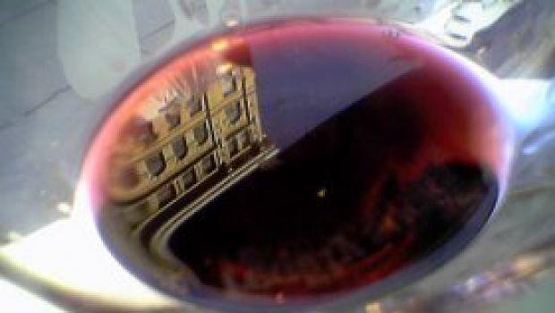 I migliori vini d'Italia secondo Slow Wine