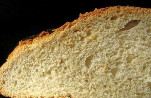 Si celebra oggi la quinta Giornata Mondiale del Pane