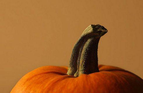 Ricette di Halloween: crema di zucca al parmigiano