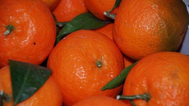 Ricette liquori fatti in casa: il liquore di mandarino e miele