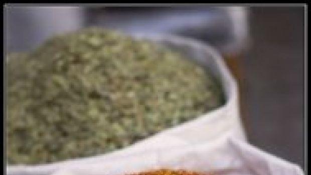 Ricette di Natale: petti di cappone ripieni con salsa allo zafferano