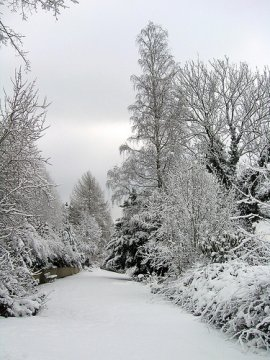 Ricette invernali: zuppa di ceci, pane e scamorza