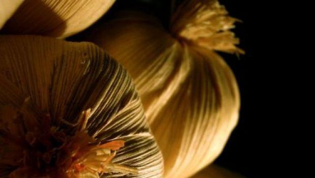 Conoscere le erbe: l'aglio
