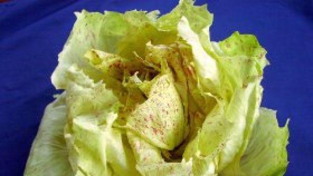 Ricette contorni: cartoccio di radicchio e gorgonzola