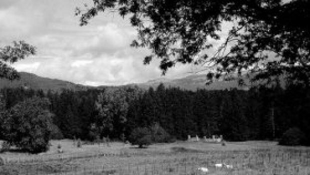 Ristoranti: da Silvana agli Altipiani di Arcinazzo