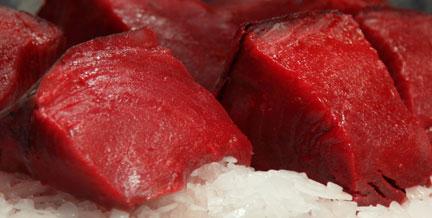 Ricette antipasti: cubetti di tonno al sesamo