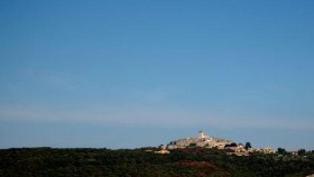 Ristoranti: La Selva a Capalbio (Gr)