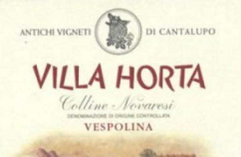 Vitigni & Vini sotto ai € 10,00: La vespolina.