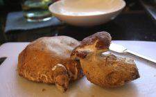 Funghi porcini farciti con fontina e salsiccia