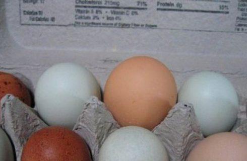 Leggere le etichette delle uova… sicuri di saperlo fare?